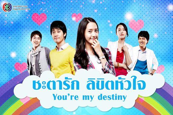 ชะตารัก ลิขิตหัวใจ (You Are My Destiny)