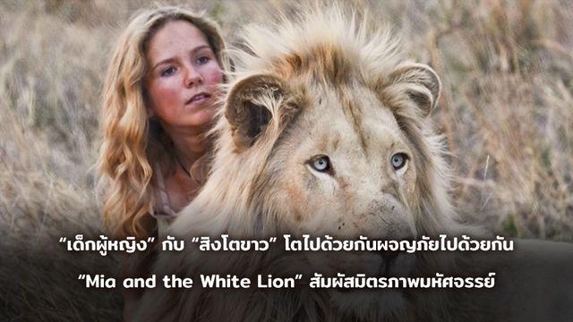 """""""เด็กผู้หญิง"""" กับ """"สิงโตขาว"""" โตไปด้วยกันผจญภัยไปด้วยกัน """"Mia and the White Lion"""" สัมผัสมิตรภาพมหัศจรรย์"""