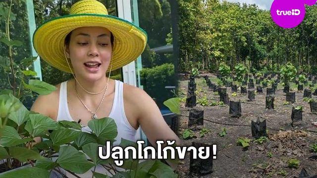 เอ็นจอยขั้นสุด!! ตั๊ก บงกช เผยภาพไร่เบญจรงคกุลปลูกต้นโกโก้ขาย ลั่นอีก 5 ปีอย่าลืมมาอุดหนุน