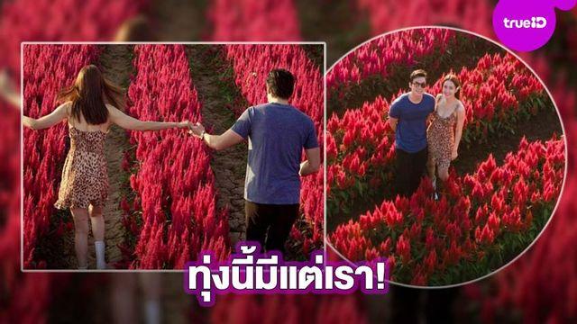 ตรงนี้มีแต่เรา! แต้ว-ประณัย จูงมือเที่ยวทุ่งดอกไม้ เชียงใหม่หวานมาก!