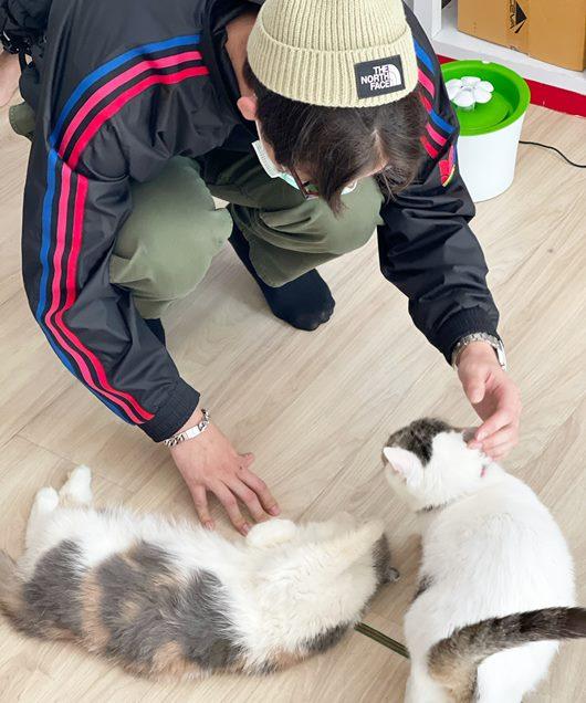 ไบร์ท วชิรวิชญ์ บริจาคอาหารแมว