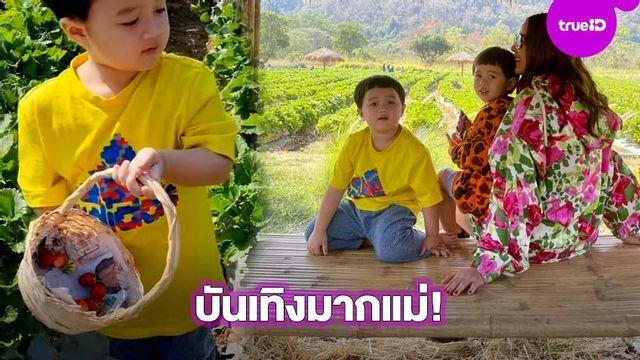 มีคนแอบกินมั้ยนะ!? ส่องความน่ารักบ้านชมพู่ สนุกมาก น้องสายฟา-นองพายุ บุกสวนสตรอว์เบอร์รี