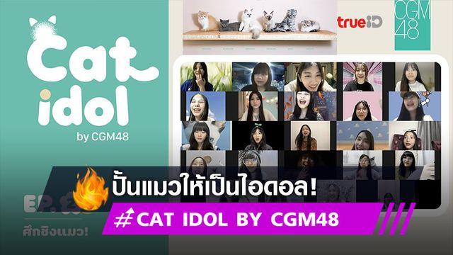 รินะ นำทีมปั้นแมวให้เป็นไอดอล โครงการ CAT IDOL by CGM48 ให้ 25 สมาชิกเป็น Promoter (มีคลิป)