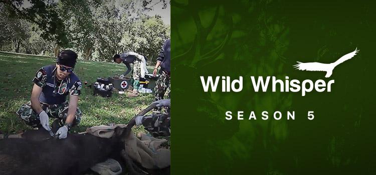 Wild Whisper 5 เรื่องเล่าคนเฝ้าป่า ปี 5 ตอนที่ 1