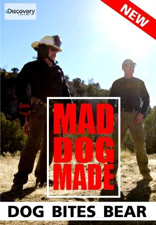 MAD DOG MADE : DOG BITES BEAR