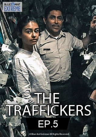 The Traffickers : PHARMACEUTICALS