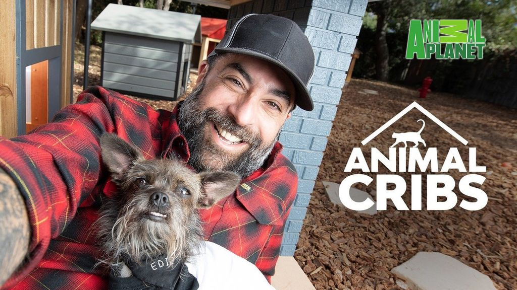 ANIMAL CRIBS (SEASON 2) ANIMAL CRIBS (SEASON 2) # PYGMY GOAT PLAYGROUND