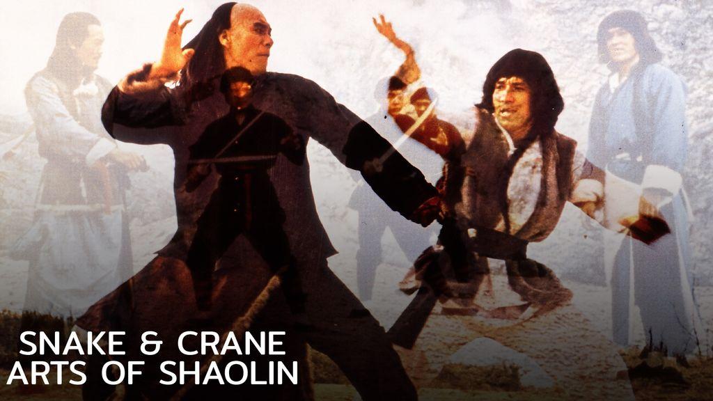 Snake & Crane Arts Of Shaolin ศึกบัญญัติ 8 พญายม