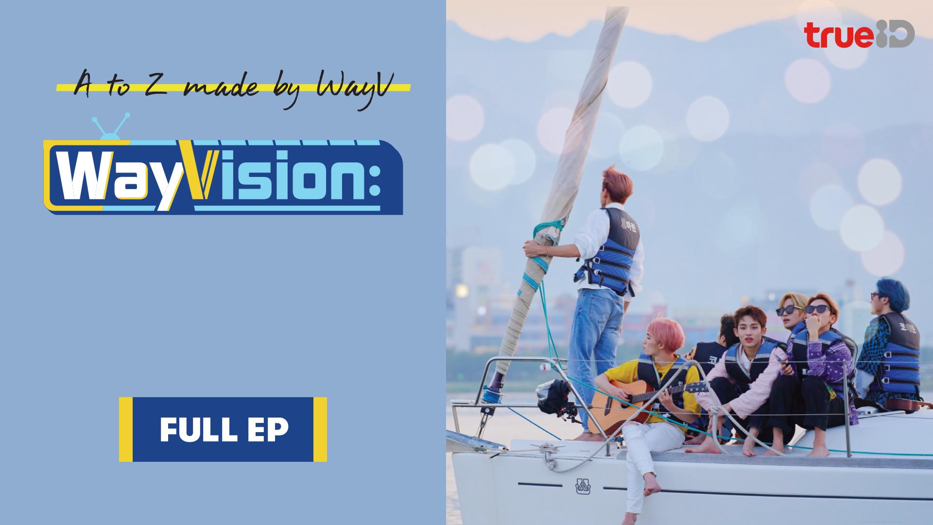 WayVision