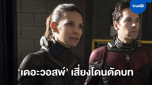"""""""อีแวนเจไลน์ ลิลลี"""" อาจโดนปรับลดบทใน Ant-Man 3 เซ่นดราม่าไม่ Social Distancing"""
