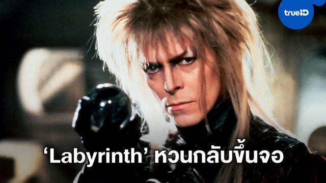 """สก็อต เดอริกสัน มีชื่อนั่งเก้าอี้กำกับภาคใหม่ """"Labyrinth"""" หนังมหัศจรรย์เขาวงกต"""