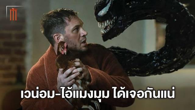 ผู้กำกับ Venom 2 ยืนยันชัด เวน่อมจะมีโอกาสได้เผชิญหน้าไอ้แมงมุมแน่นอน!