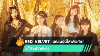 ฉลองเดบิวต์ครบรอบ 7 ปี! Red Velvet เตรียมจัดไลฟ์พิเศษในวันที่ 1 ส.ค.นี้