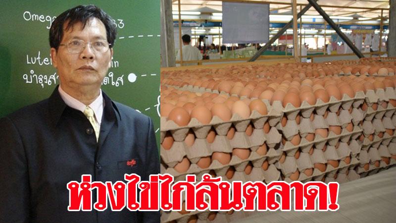 ส.ผู้ผลิต-ส่งออกไข่ไก่ห่วงล้นตลาด ซ้ำรอยปีก่อนๆ ชี้ห้ามส่งออกนานไปอาจกระทบสมดุลในประเทศ