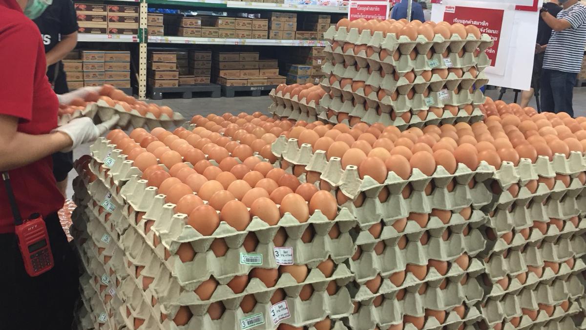 จับ-ปรับจริง! พาณิชย์ให้รางวัลนำจับ คนแจ้ง 'ไข่แพง' แนะผู้ค้ารายย่อยเก็บหลักฐานการซื้อ