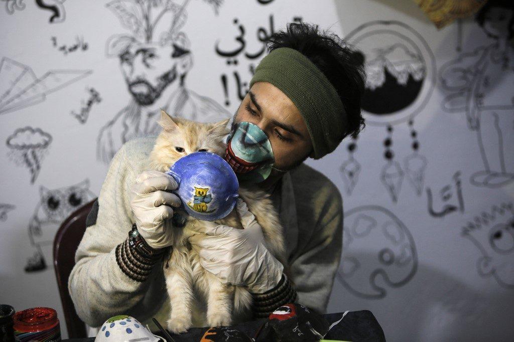 เบลเยียมพบ 'แมว' ติดไวรัสโคโรนาจากเจ้าของ ยันสัตว์เลี้ยงไม่ใช่พาหะ