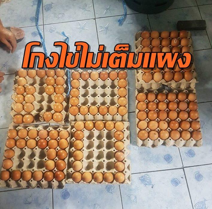 แฉกลโกงแม่ค้าเชียงใหม่ยุคโควิด-19 ขายไข่ไม่เต็มแผง ซ้ำเติมเด็กกำพร้าวัดดอนจั่น