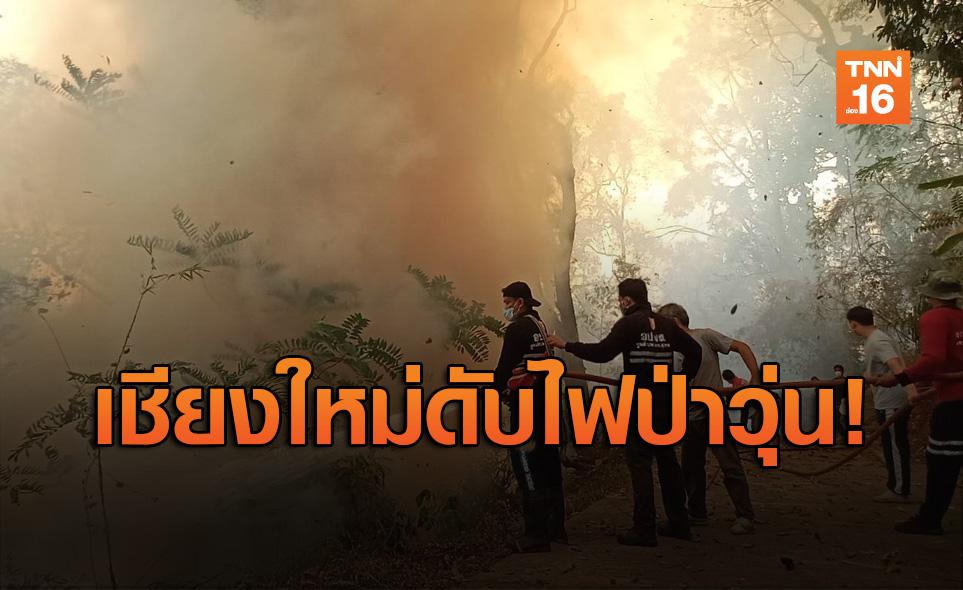 ไฟป่าลุกใกล้วัดพระธาตุดอยสุเทพฯ ใช้เวลา 2 ชม.คุมไว้ได้