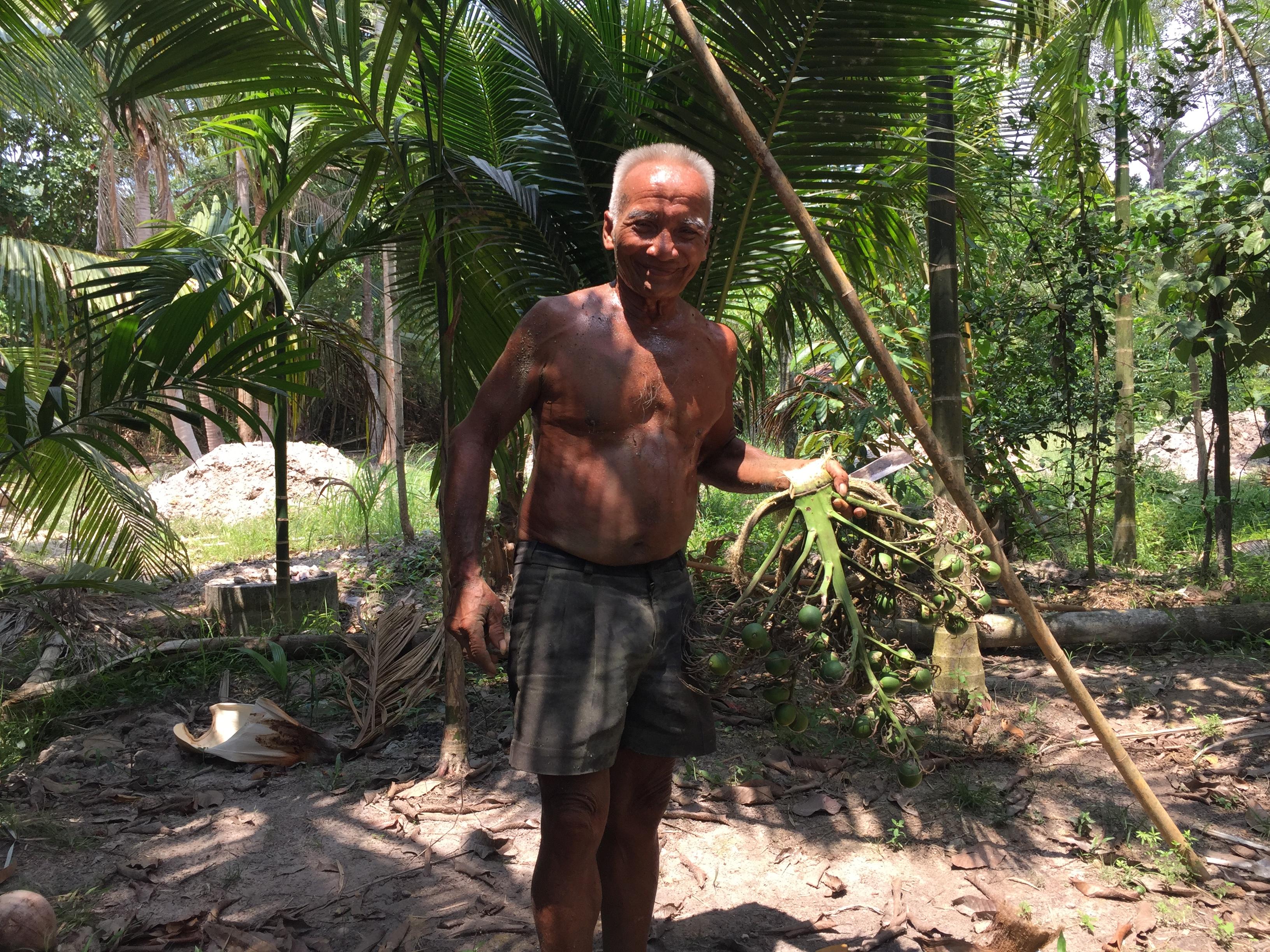ลุงวัย 73 ยังยึดอาชีพปีนต้นหมากทำมานานกว่า 50 ปี