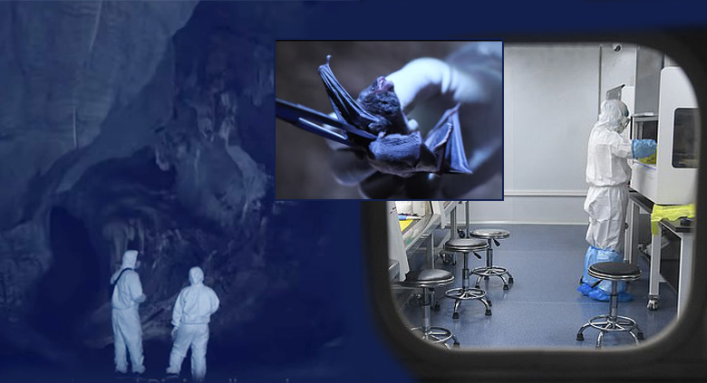 โควิด:ต้นตอเชื้อที่ห้องแล็บ ? คลิปนักวิจัยบุกถ้ำค้างคาว ตอกย้ำปริศนา