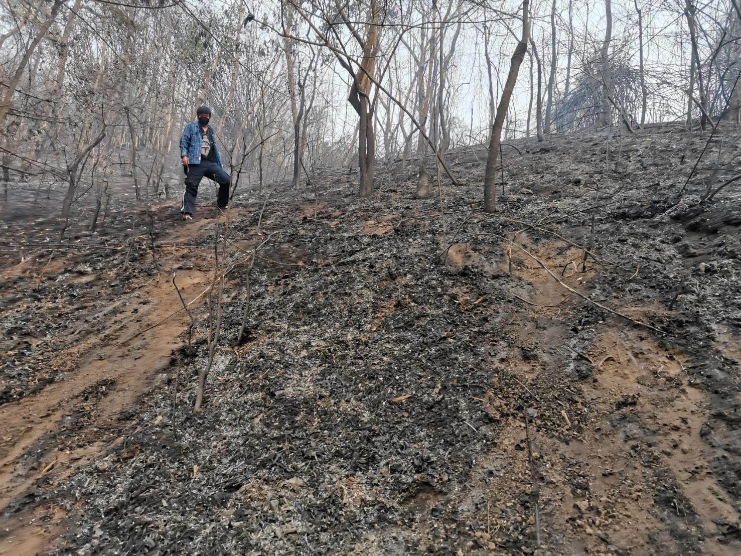 ผู้ว่าฯ เชียงราย เสียใจหลังจิตอาสา ถูกไฟคลอกตายเสียชีวิต 1 ราย พร้อมช่วยเหลือครอบครัวเต็มที่
