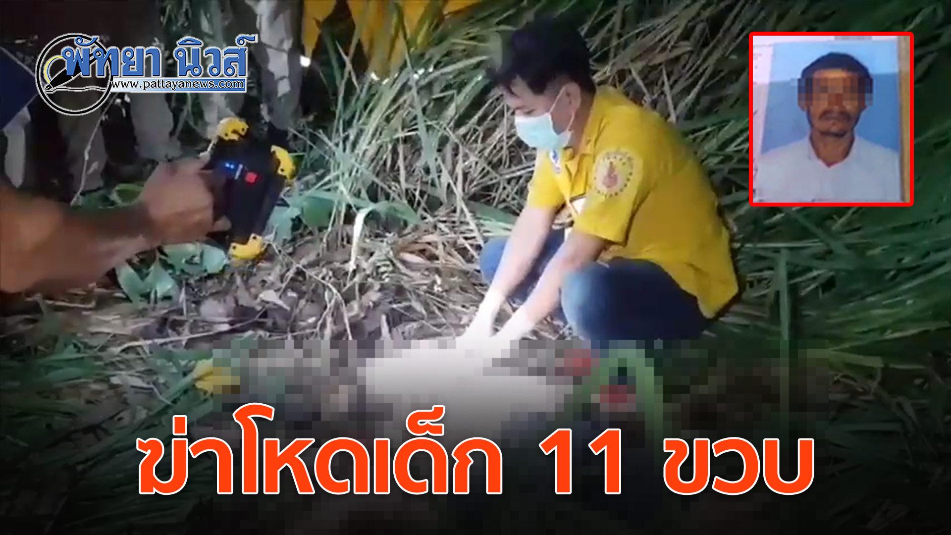 หนุ่มใหญ่ชาวพม่า คว้ามีดฟันหน้าเด็กวัย 11 ปี หมกป่าหญ้า แม่เผยถูกขู่ฆ่ามานาน