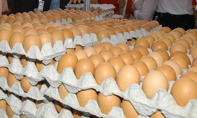 ไข่ล้นตลาดอีกแล้ว!! วันละ3ล้านฟอง รัฐงัดไม้เดิมเร่งส่งออก-บริโภคในประเทศ เป้า215 ล้านฟอง
