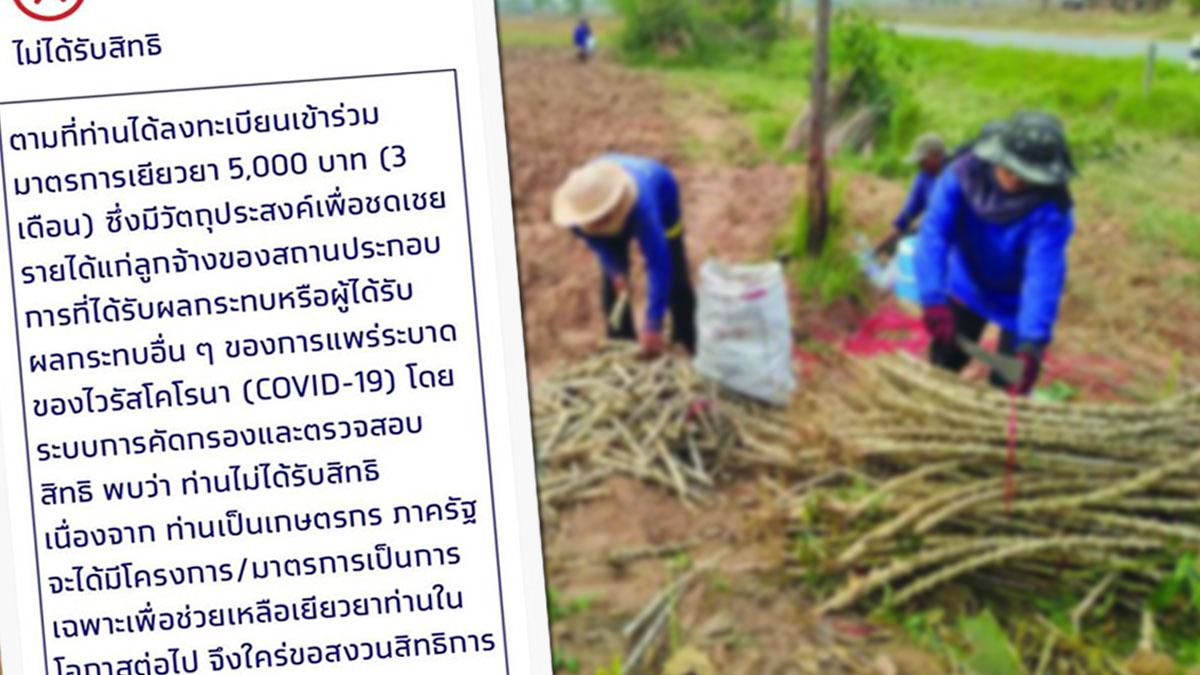 คลายข้อสงสัย ทำไมไม่ได้รับ เยียวยา5พัน เพราะถูกจัดอยู่ในกลุ่มเกษตรกร