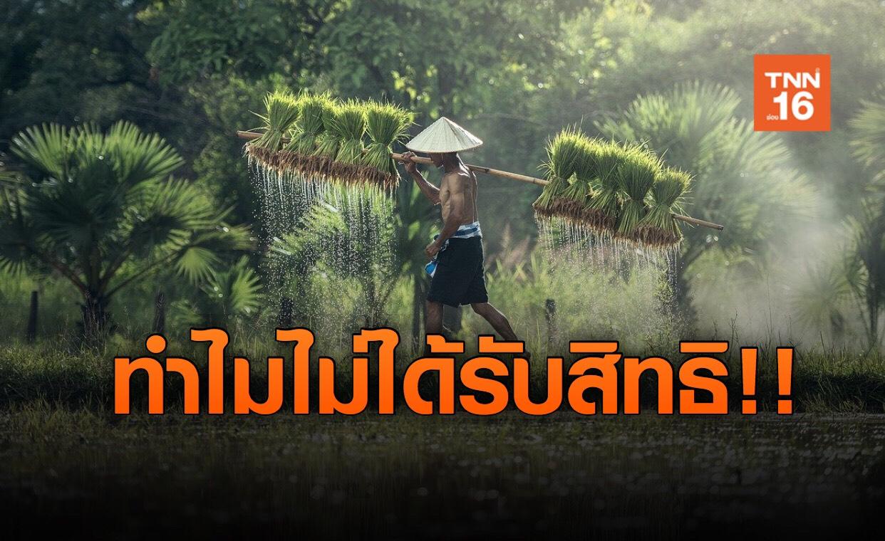 """กรุงไทย คลายข้อสงสัย ทำไมเกษตรกร ถึงไม่ได้เงิน """"เราไม่ทิ้งกัน"""""""