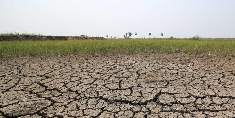 'เกษตรฯ' ขอรัฐบาล 9.5 หมื่นล้าน ช่วยเกษตรกรสู้โควิด-ภัยแล้ง