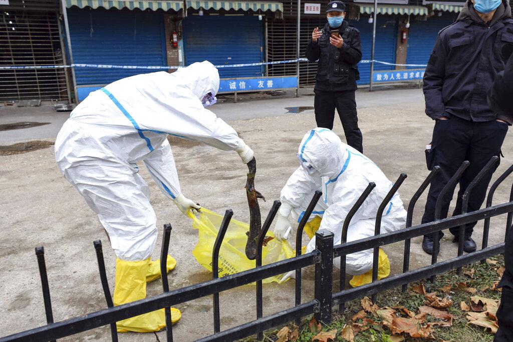 โควิด:6วันที่หายไป เจาะลึกปมลับไวรัสระบาด ชี้เคสในไทยคือจุดเปลี่ยนจีน