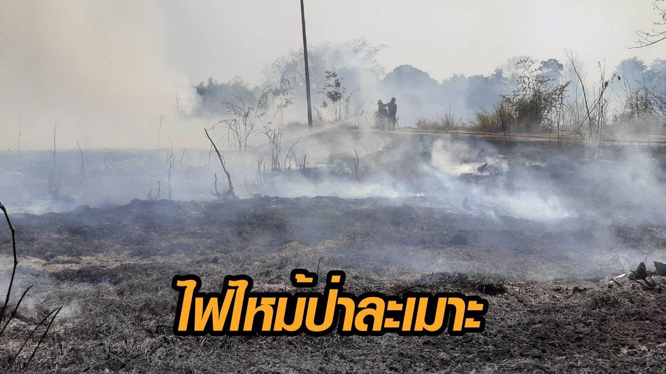 ไฟไหม้ป่าละเมาะ หลังโรงเรียนบุญลำพูน ลามกว่า 10 ไร่ ยังไม่ทราบสาเหตุ