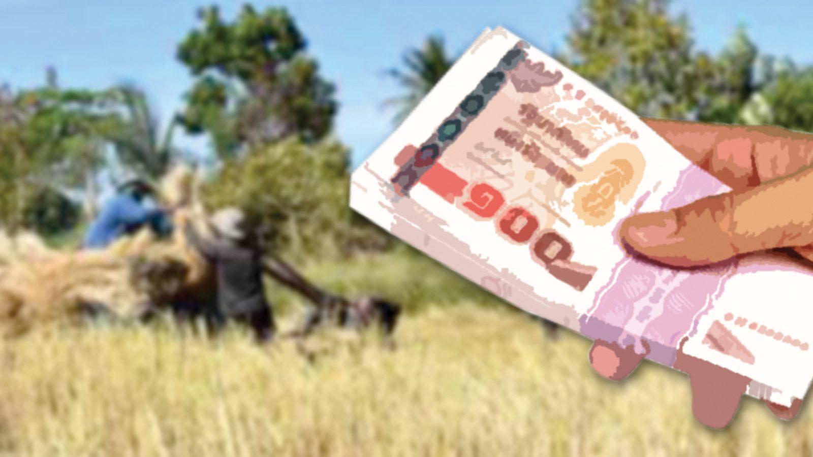'ก.เกษตรฯ' เตรียมช่วยเกษตรกร 10 ล้านทะเบียน 5,000 บาท นาน 3 เดือน