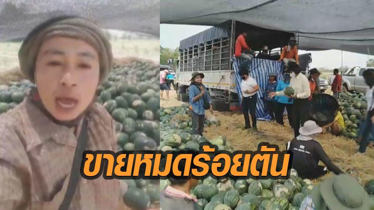 คนไทยไม่ทิ้งกัน สาวไลฟ์สดขายแตงโม 100 ไร่ 100 ตัน หมดเกลี้ยงในคืนเดียว