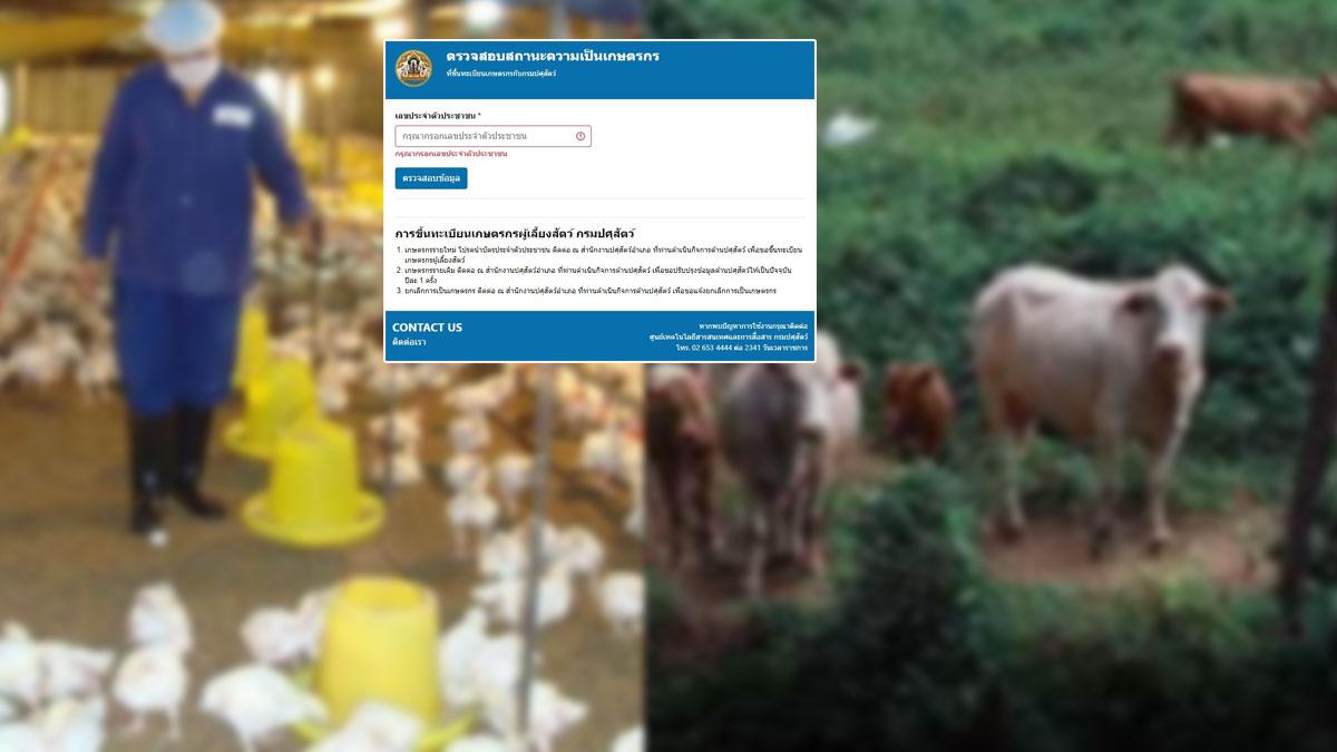 ตรวจสอบสถานะ เกษตรกรผู้เลี้ยงสัตว์ รัฐเตรียมเยียวยา 5,000 บาท 3 เดือน