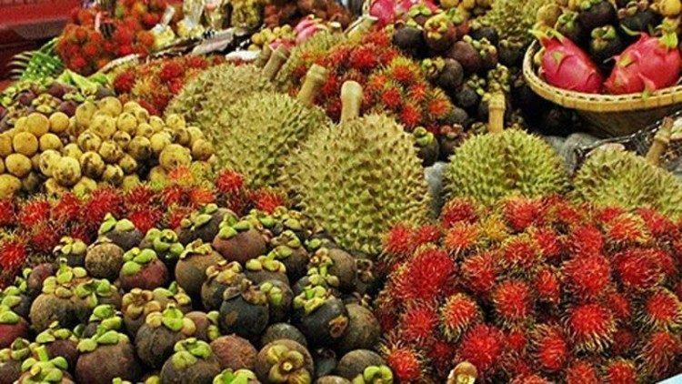 'กรมวิชาการเกษตร' เผยจีนไฟเขียวเปิดด่านนำเข้าผลไม้ไทยเพิ่ม 2 ด่าน