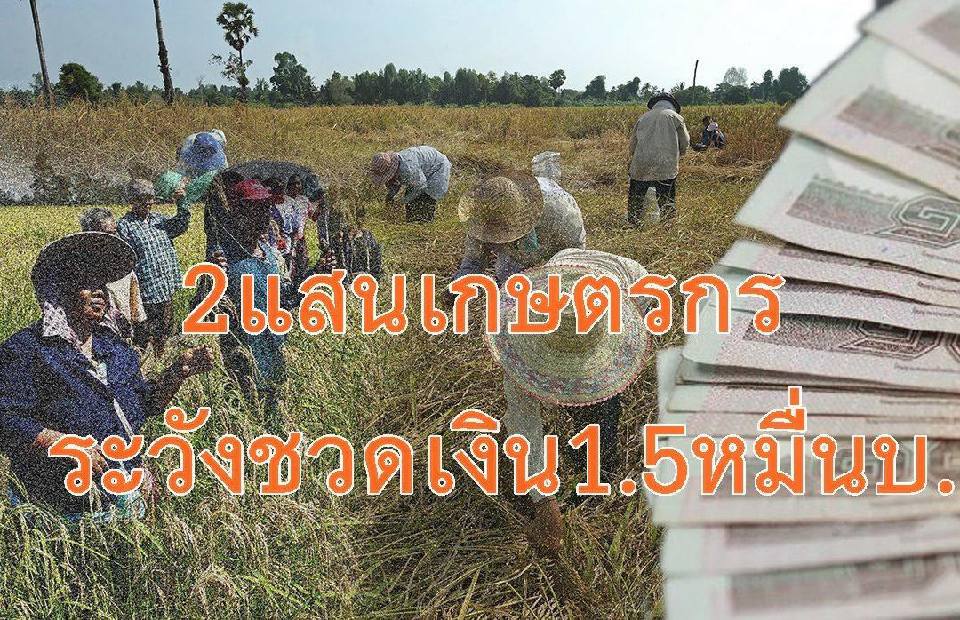 ด่วน!! 2 แสนคนระวังไม่ได้เงินเยียวยาเกษตรกร 15,000 บาท รีบเข้าเว็บแจ้งบัญชีธนาคาร