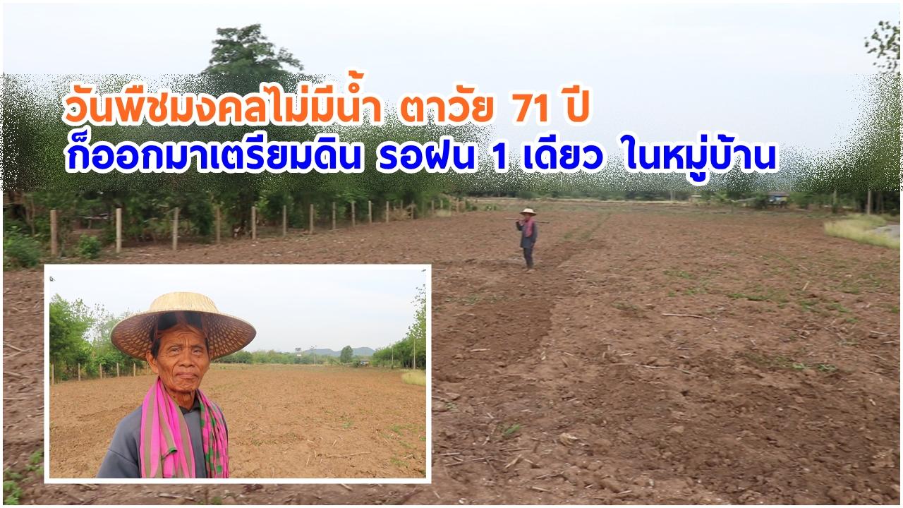 เลย วันพืชมงคลไม่มีน้ำ ตาวัย 71 ปี ก็ออกมาเตรียมดิน รอฝน 1 เดียว ในหมู่บ้าน