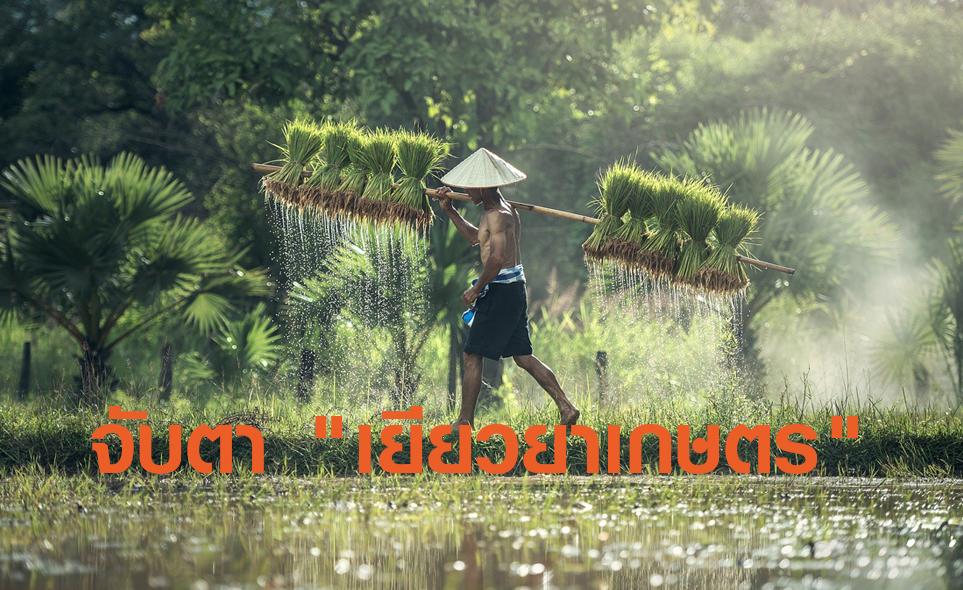 จับตาเยียวยาเกษตรกรซ้ำรอยดราม่า5,000บาท