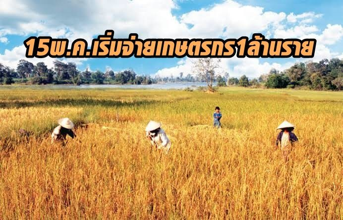 ยัน15พ.ค.นี้เริ่มจ่าย 5,000 เกษตรกร 1 ล้านรายแรก