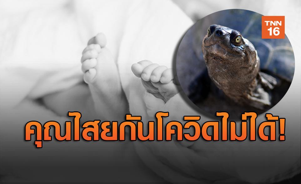 สลด! ทารก 5 เดือนสังเวยชีวิต เพราะยาโควิด-19ของหมอผี