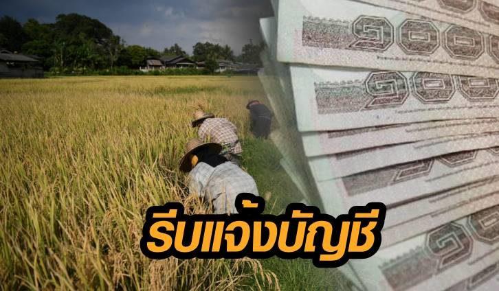 ด่วน! เกษตรกร 2.5 แสนราย รีบแจ้งบัญชี ระวังชวดเงินเยียวยา 5 พันบาท