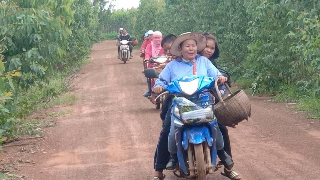 ฝนชุก! ชาวบ้านแห่เก็บเห็ดขายครึ่งหมู่บ้าน