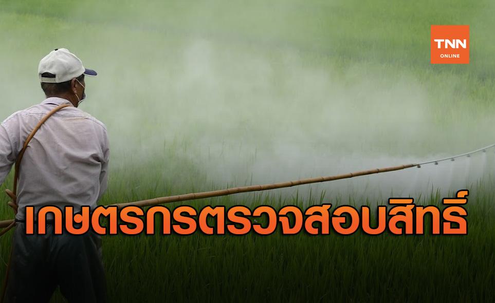 เกษตรกรตรวจสอบสิทธิ์! วันนี้โอนเงินเยียวยาเพิ่มอีก6.2แสนราย