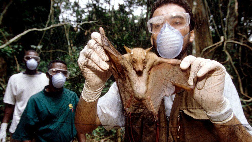 โควิด-19 : เหตุใดไวรัสโคโรนาสายพันธุ์ใหม่จะไม่ใช่การระบาดครั้งสุดท้าย