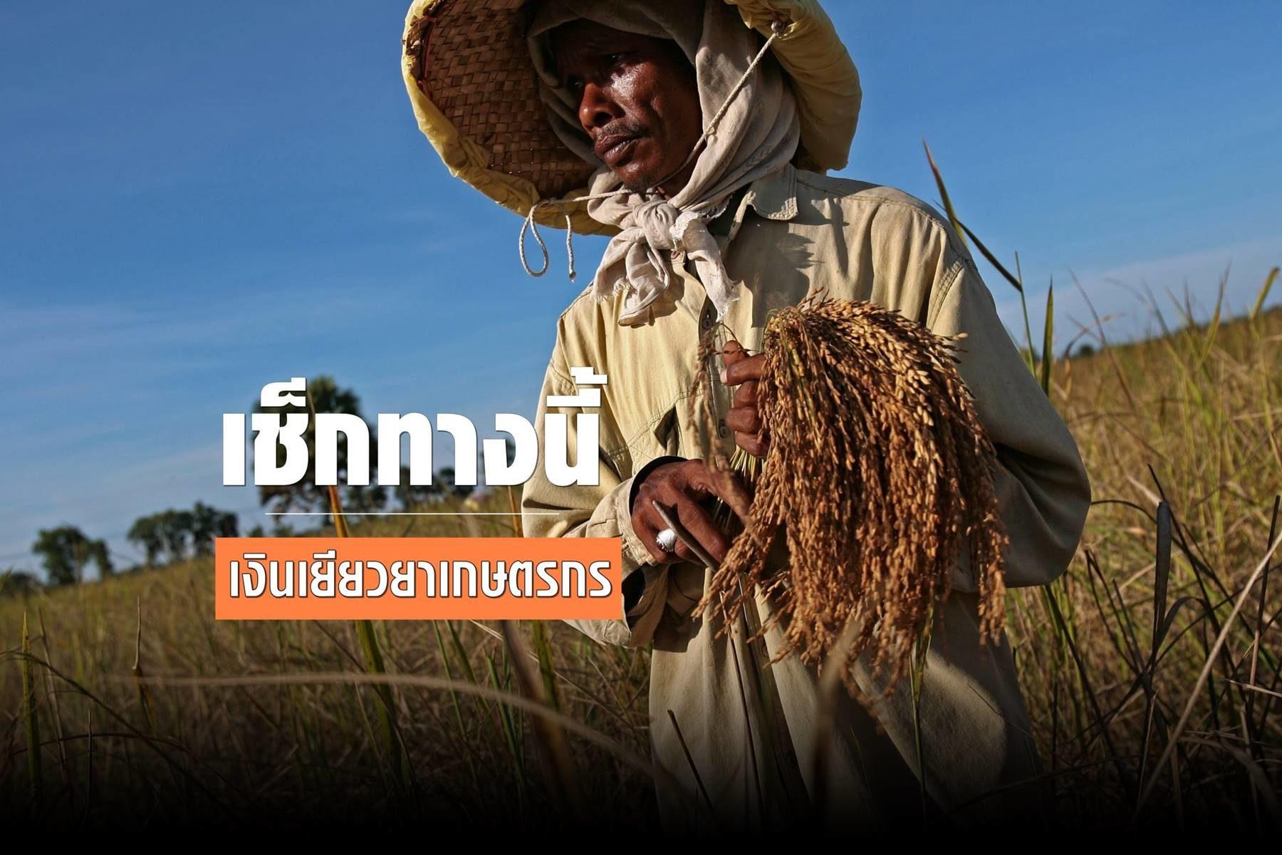 เช็กเลย เงินเยียวยาเกษตรกร งวด 2 เข้าแล้ว 1 ล้านคน คาด 21 มิ.ย. จ่ายครบ 7.2 ล้านคน