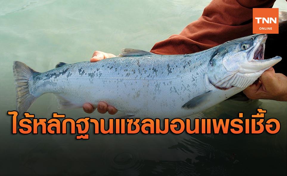 จีนยืนยันไม่มีหลักฐาน ปลาแซลมอน แหล่งแพร่เชื้อโควิด-19