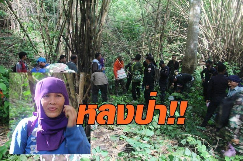 หญิงหลงป่า 2 วัน 1 คืน ทิ้งเห็ดโคนมูลค่าครึ่งหมื่น เพื่อเอาชีวิตรอด