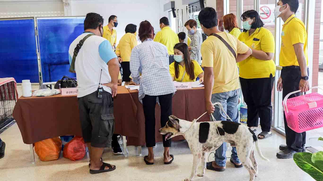 ปศุสัตว์รณรงค์กำจัดโรคพิษสุนัขบ้านเฉลิมพระเกียรติฯ