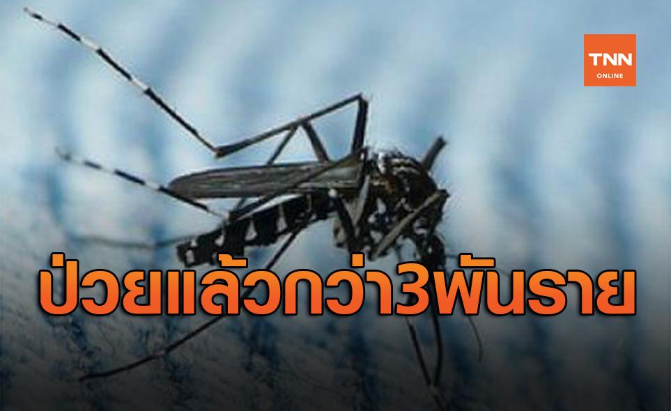 เตือนระวัง! โรคชิคุนกุนยา พบป่วยแล้วกว่า3พันรายจาก56จังหวัด